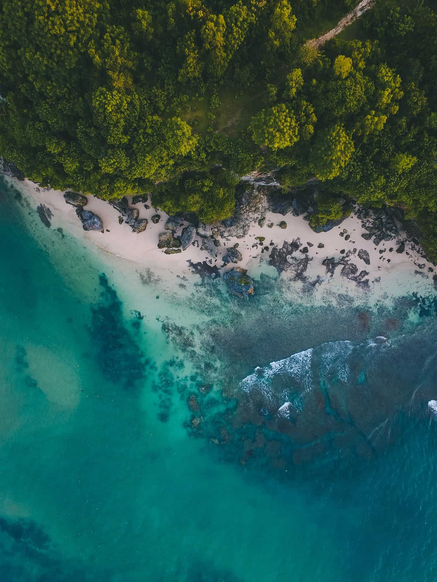 Paradise Beach: Know Everything About It